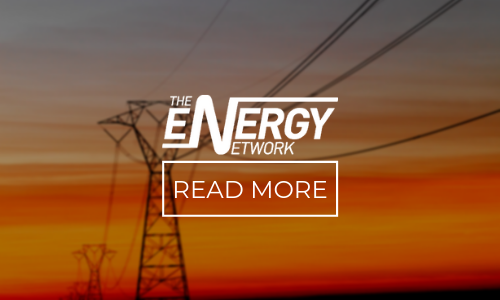 The Energy Network case study